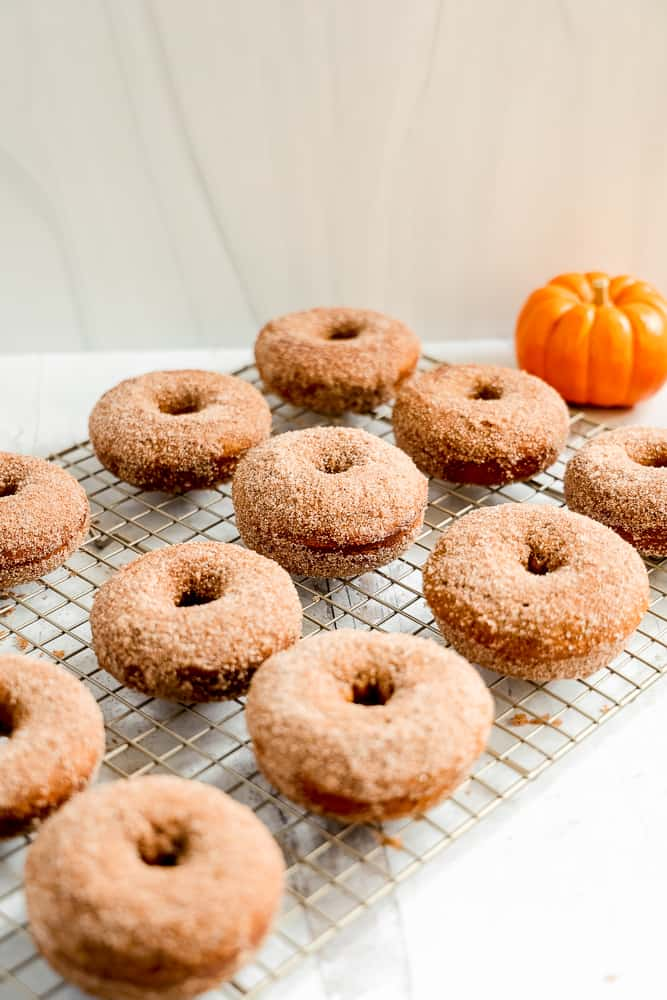 12 cinnamon sugar donuts on a rack with pumpkins in background