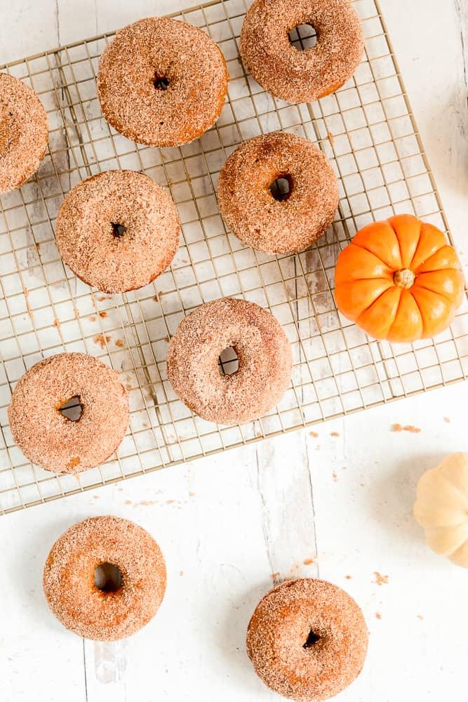 overhead shot of pumpkin cinnamon sugar donuts