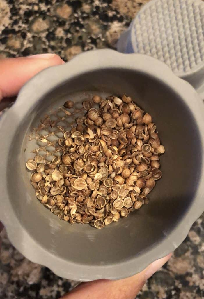 hand ground coriander seeds in a spice grinder