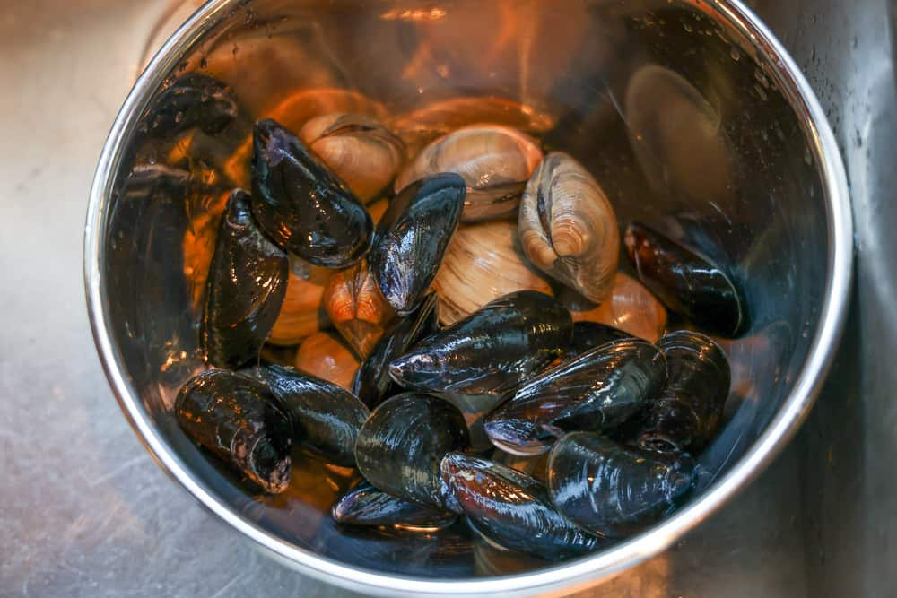 clams and mussels in a bowl