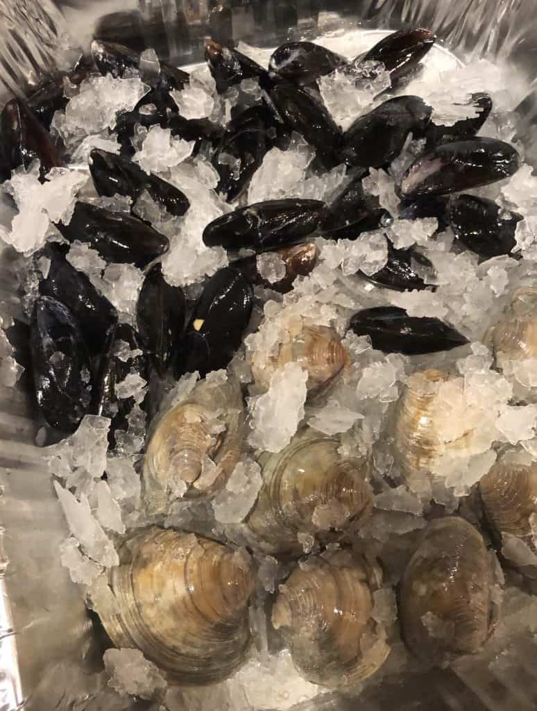 mussels and clams in ice
