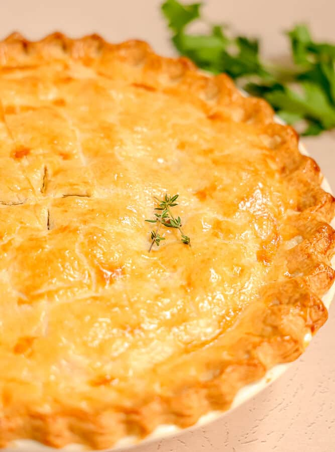 close up of baked chicken pot pie crust