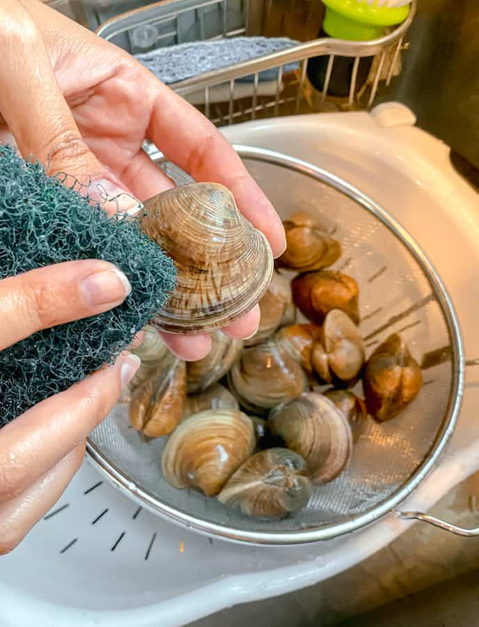 scrubbing clams in sink