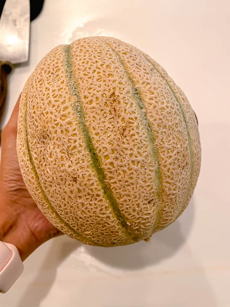 photo of cantaloupe in hand