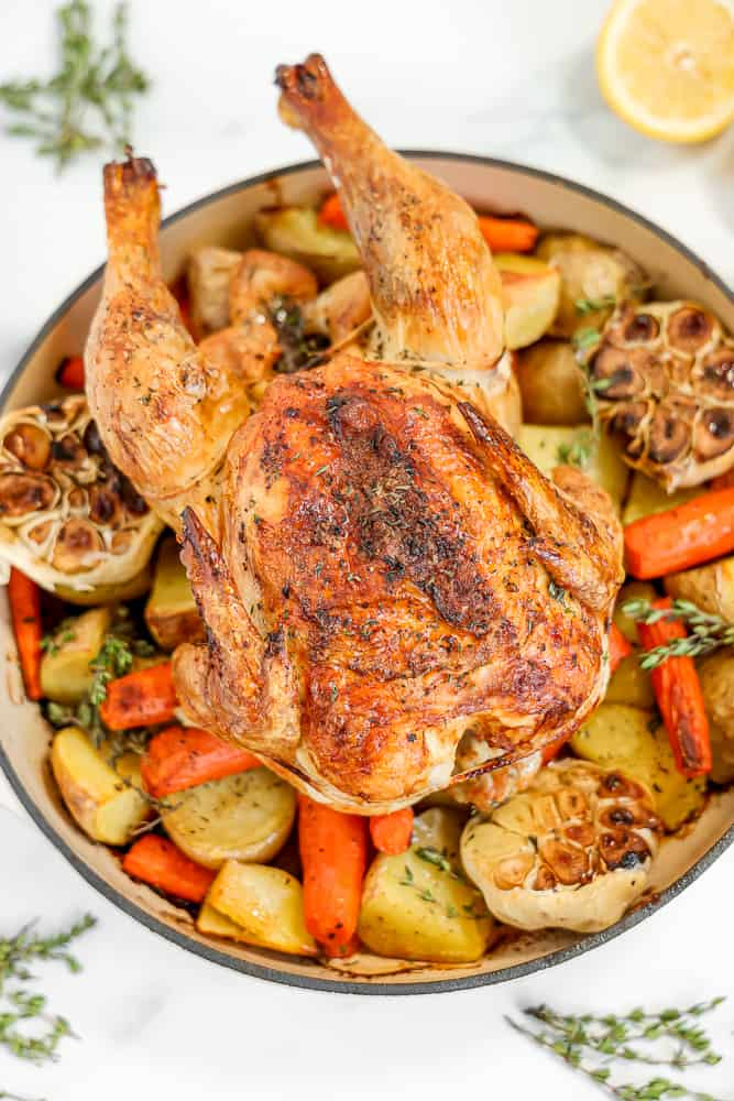 whole roasted chicken sitting on roasted vegetables.