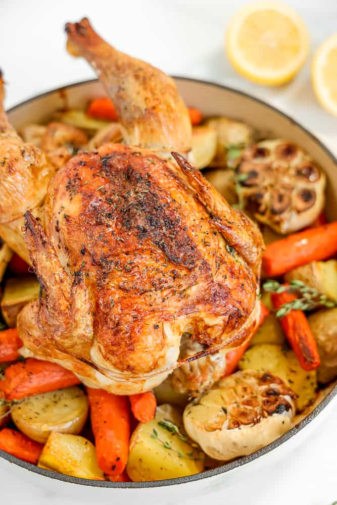 whole roasted chicken on bed of vegetables