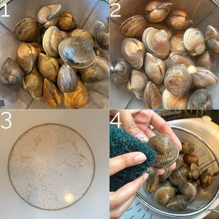 cleaning clam shells