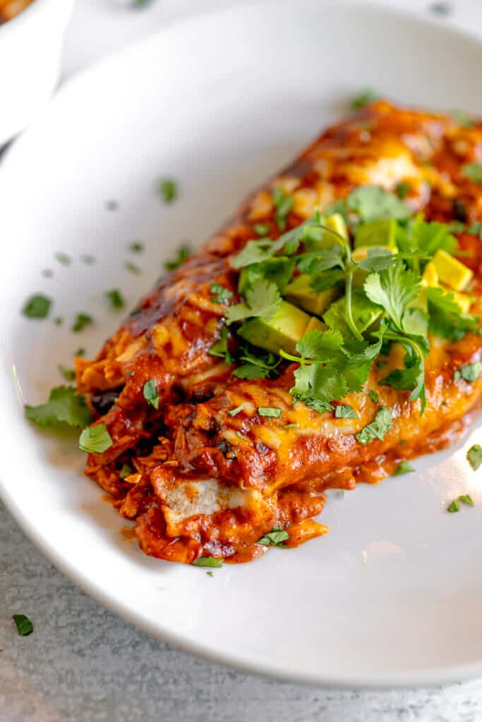 close up of two chicken enchiladas on a plate topped with cilantro and avocado