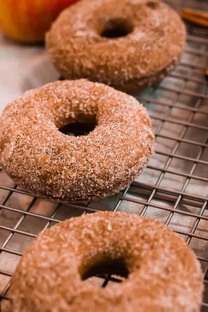 close up photo of cinnamon sugar on apple cider donuts